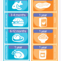 Infographic: How Long Does Food Last?