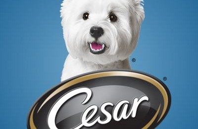 Show Your Dog Some Love with Cesar Meaty Selects