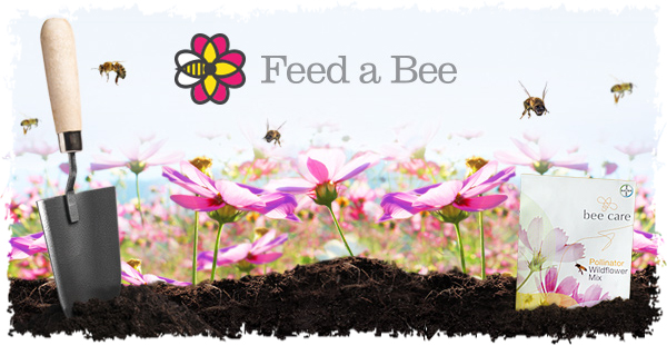 feed a bee free flower seeds