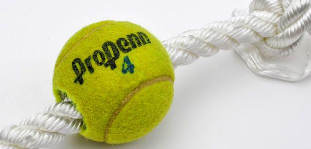 diy dog toy tennis ball