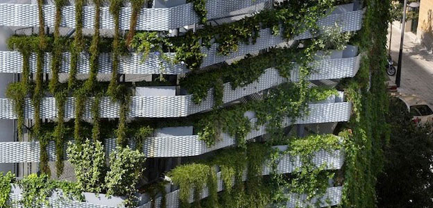 green building plants